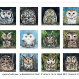 owls-poster16x20